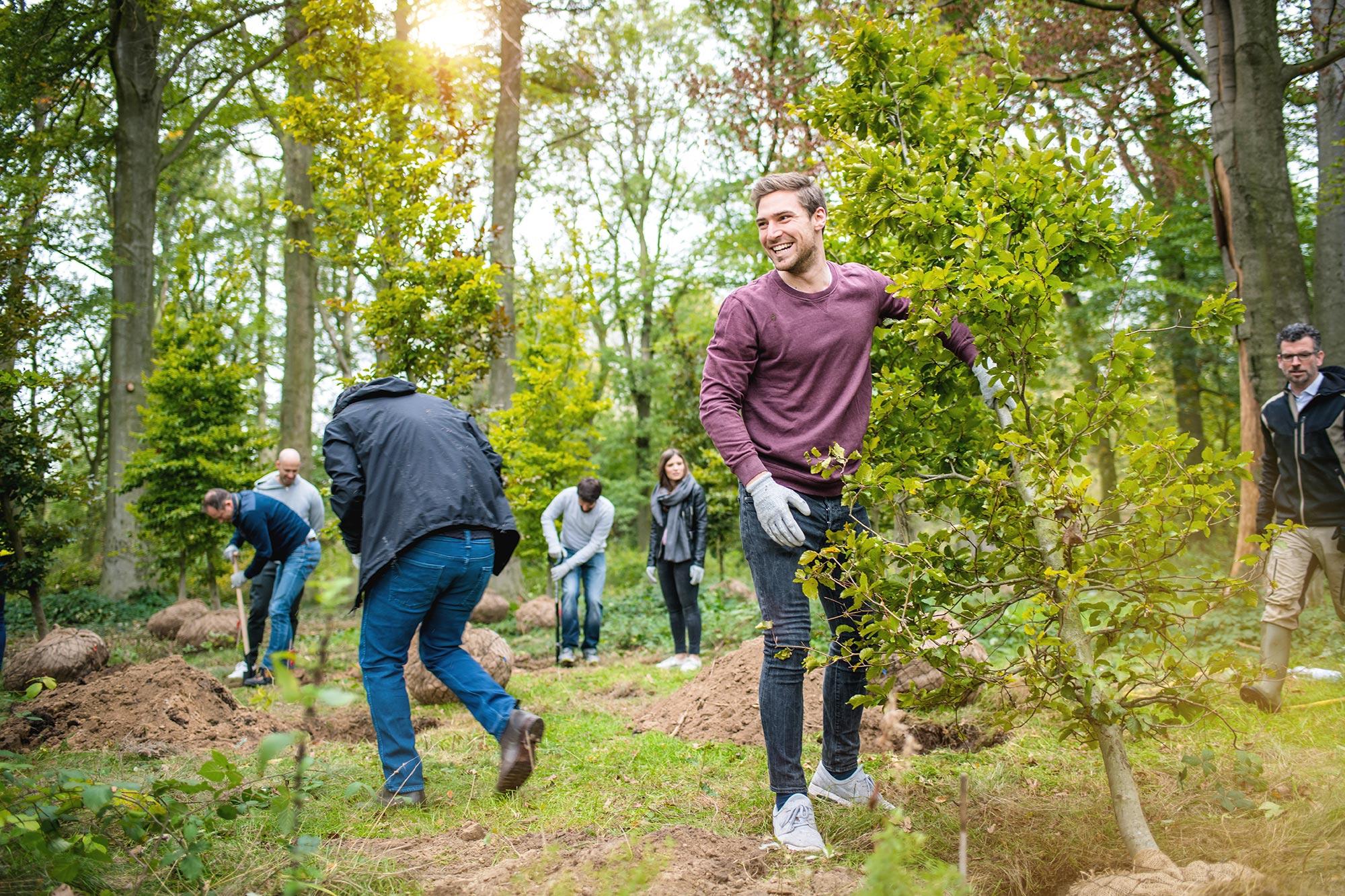 Santiago Advisors Beratungsagentur Imagemotive Baumpflanzen im Wald Project Zero Natur lachender Mann